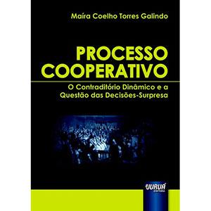 Processo Cooperativo - O Contraditório Dinâmico e a Questão Das Decisões-Surpresa