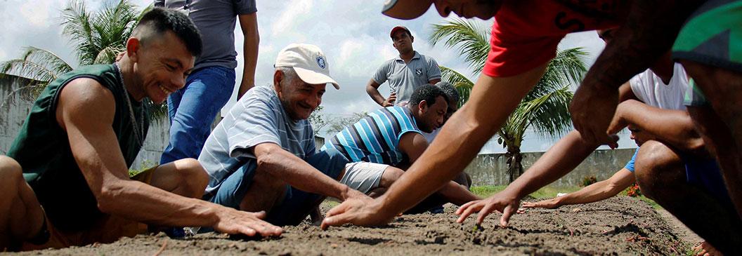 Detentos aprendem técnicas de agricultura familiar em curso de horticultura