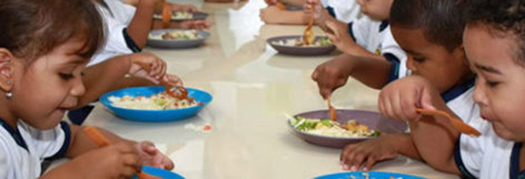 Agricultores familiares podem fornecer alimentos para escolas de SC